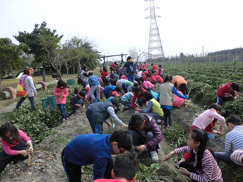 farm71-1