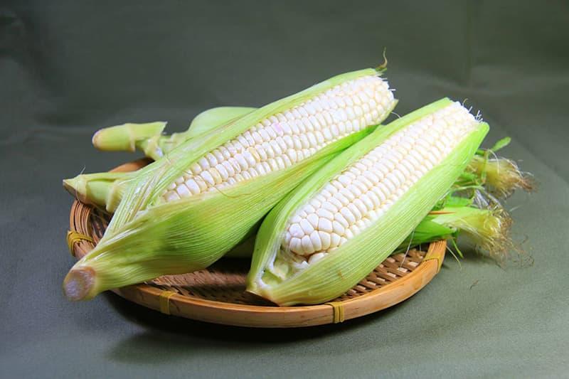 farm79-6