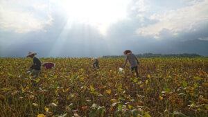 羅山大自然體驗農家
