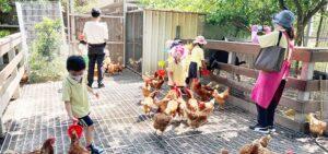 桂園自然生態休閒農場